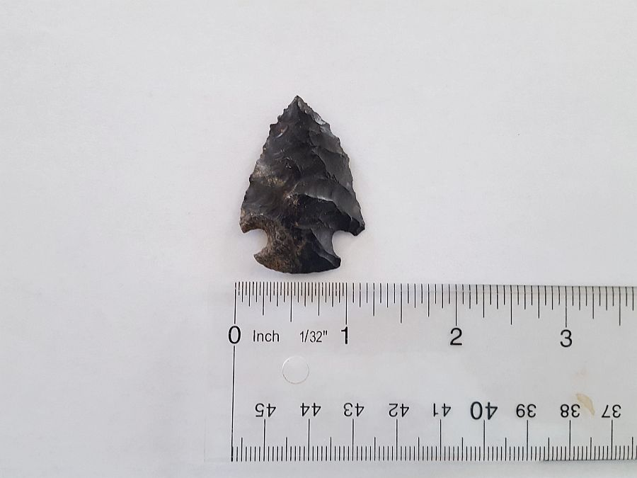 Fl. Bolen type Arrowhead | Fossils & Artifacts for Sale | Paleo Enterprises | Fossils & Artifacts for Sale