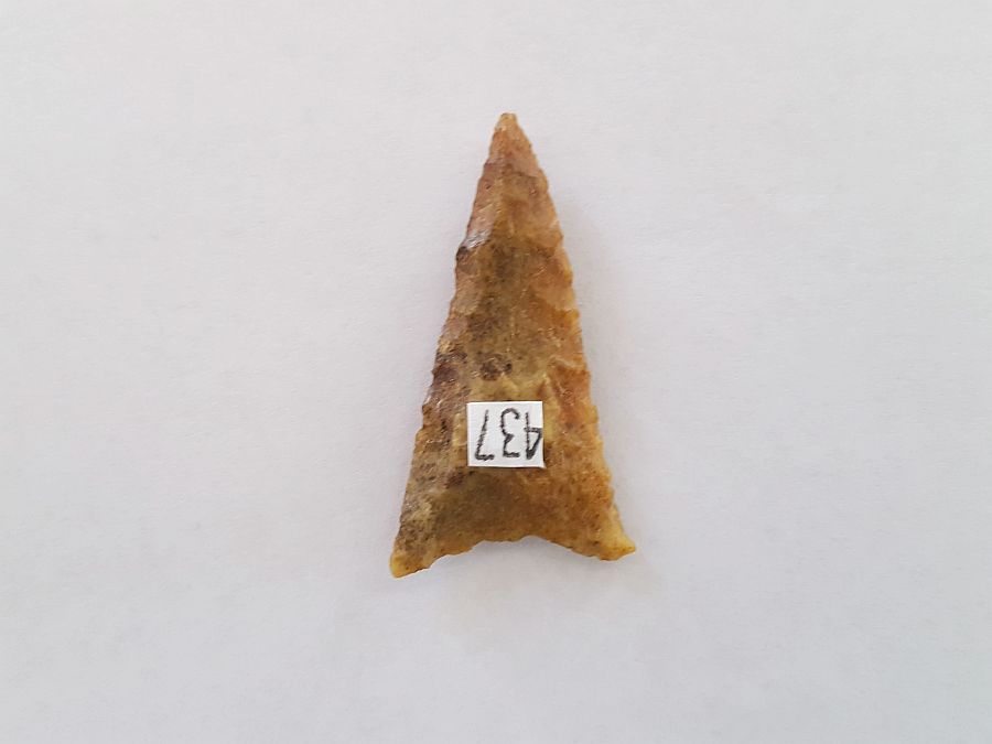 Fl. Safety Harbor type Arrowhead | Fossils & Artifacts for Sale | Paleo Enterprises | Fossils & Artifacts for Sale
