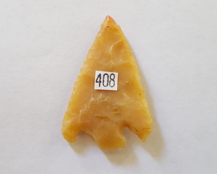 Fl. Clay type Arrowhead, translucent coral! | Fossils & Artifacts for Sale | Paleo Enterprises | Fossils & Artifacts for Sale