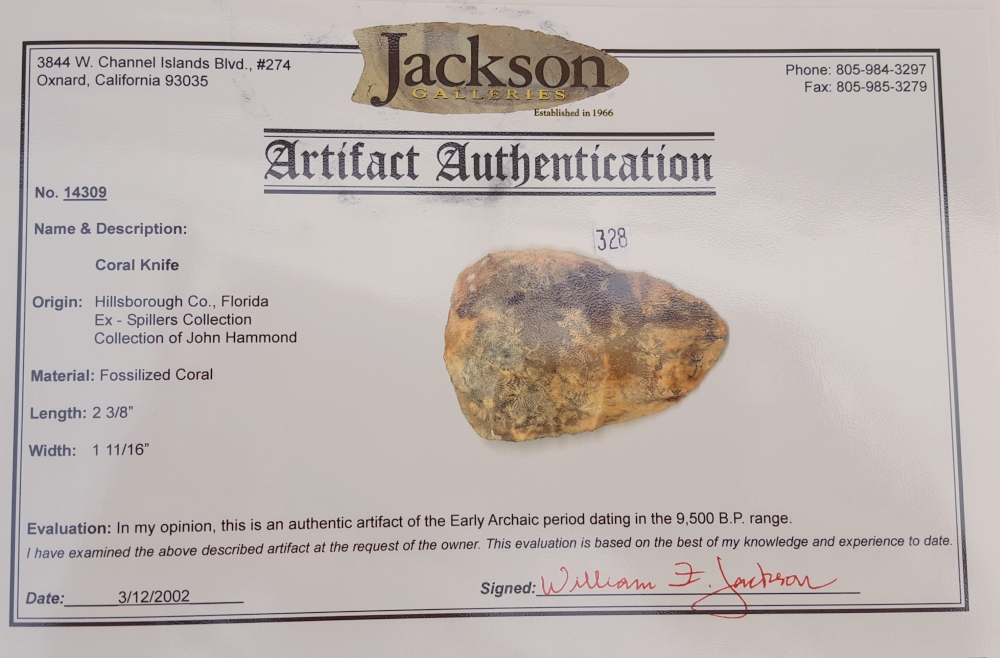 Fl. Agatized Coral knife, TRANSLUCENT CORAL W/COA! | Fossils & Artifacts for Sale | Paleo Enterprises | Fossils & Artifacts for Sale