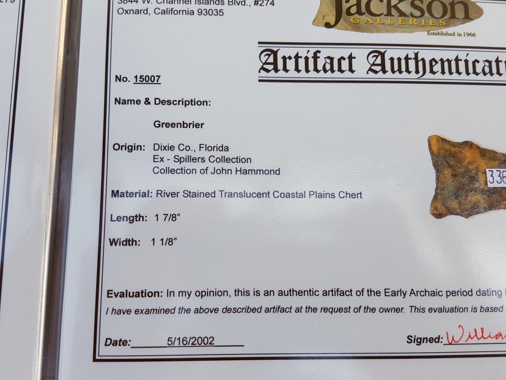 Fl. Osceola-Greenbriar type arrowhead w/COA!   Fossils & Artifacts for Sale   Paleo Enterprises   Fossils & Artifacts for Sale