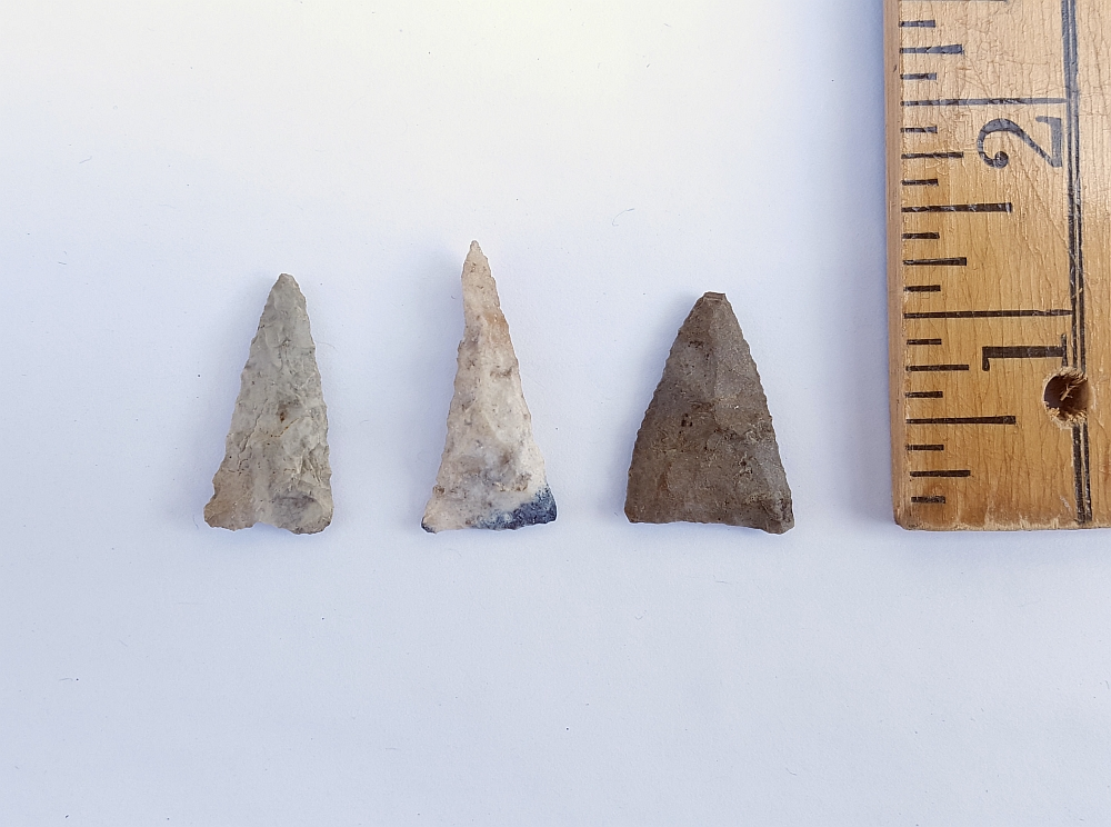 Fl. Pinellas type arrowheads, GROUP OF THREE w/COA! | Fossils & Artifacts for Sale | Paleo Enterprises | Fossils & Artifacts for Sale