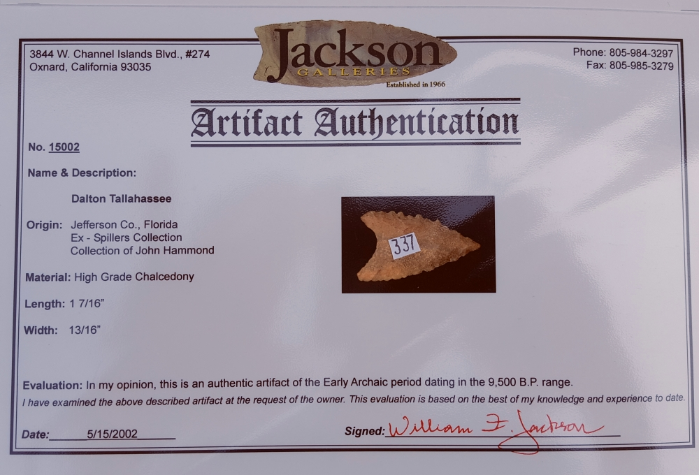 Fl. Tallahassee-Dalton type arrowhead with COA! | Fossils & Artifacts for Sale | Paleo Enterprises | Fossils & Artifacts for Sale
