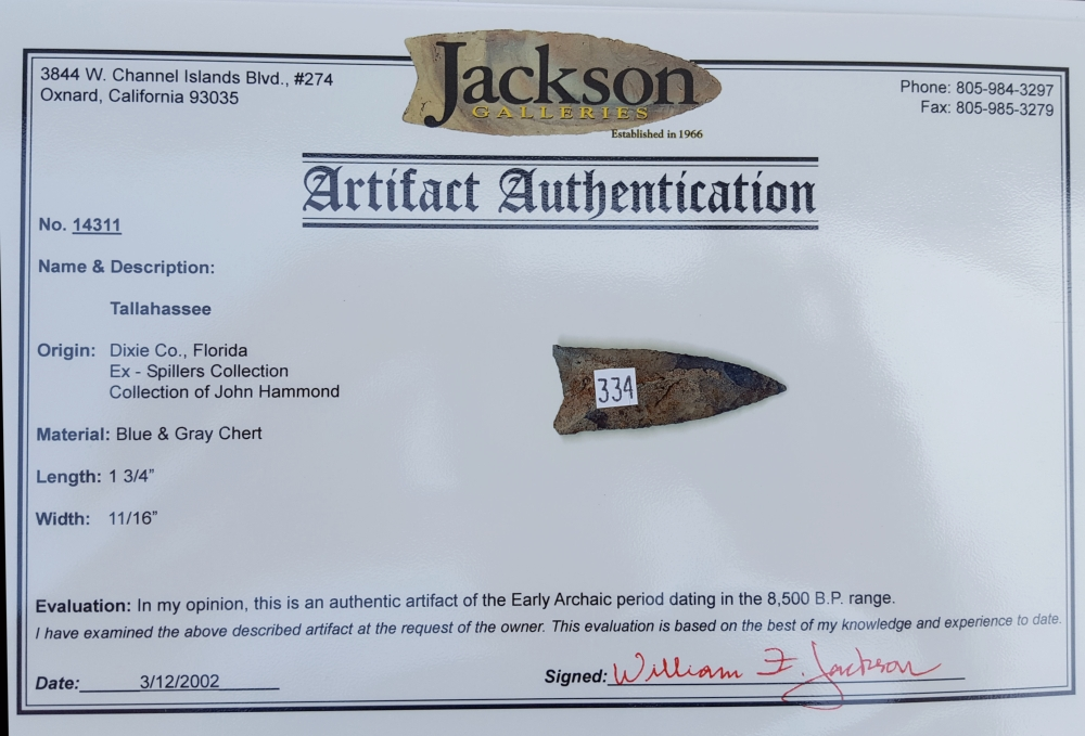 Fl. Tallahassee type arrowhead w/COA! | Fossils & Artifacts for Sale | Paleo Enterprises | Fossils & Artifacts for Sale