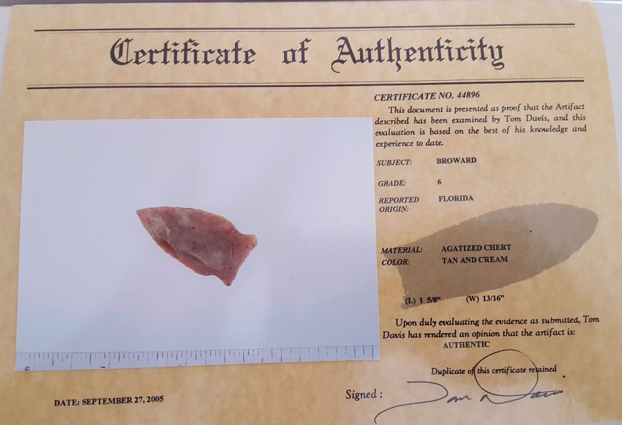Fl. Broward type Arrowhead | Fossils & Artifacts for Sale | Paleo Enterprises | Fossils & Artifacts for Sale