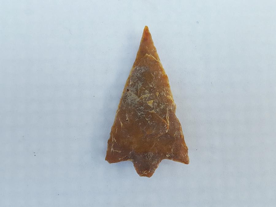 Fl. Hillborough type arrowhead, TRANSLUCENT CORAL!   Fossils & Artifacts for Sale   Paleo Enterprises   Fossils & Artifacts for Sale