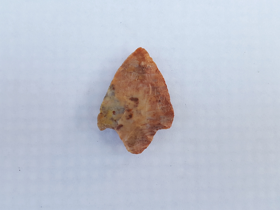 Fl. Marion type arrowhead, COLORFUL CORAL! | Fossils & Artifacts for Sale | Paleo Enterprises | Fossils & Artifacts for Sale