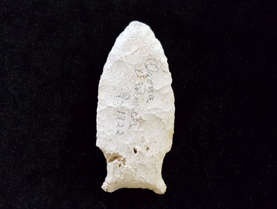 Fl. Union Side Notch Arrowhead | Fossils & Artifacts for Sale | Paleo Enterprises | Fossils & Artifacts for Sale