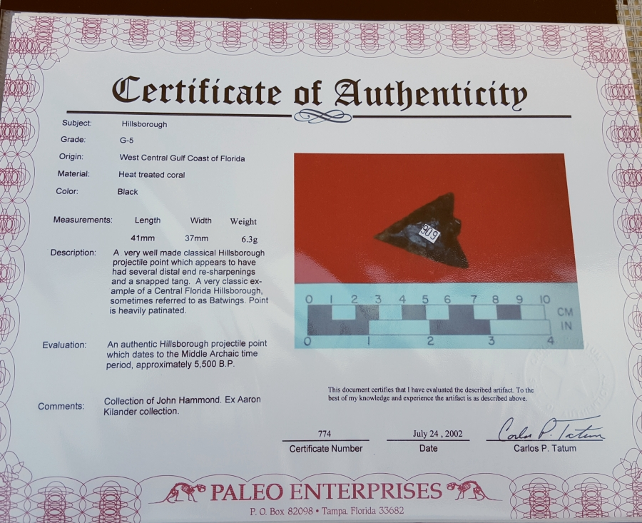 Fl. Hillsborough type arrowhead, G9 with COA! | Fossils & Artifacts for Sale | Paleo Enterprises | Fossils & Artifacts for Sale