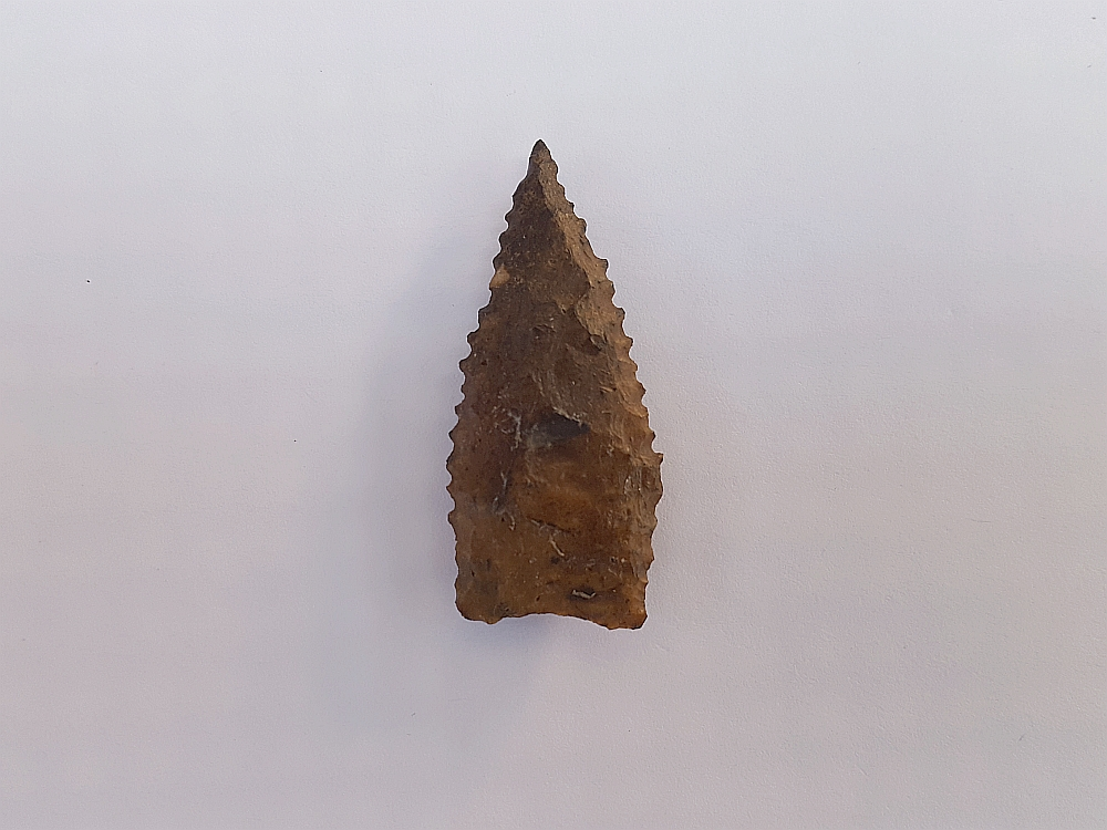 Fl. Tallahassee-Dalton type arrowhead | Fossils & Artifacts for Sale | Paleo Enterprises | Fossils & Artifacts for Sale
