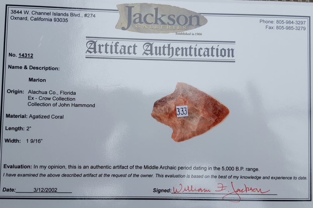 Fl. Marion type arrowhead, COLORFUL RED CORAL! | Fossils & Artifacts for Sale | Paleo Enterprises | Fossils & Artifacts for Sale