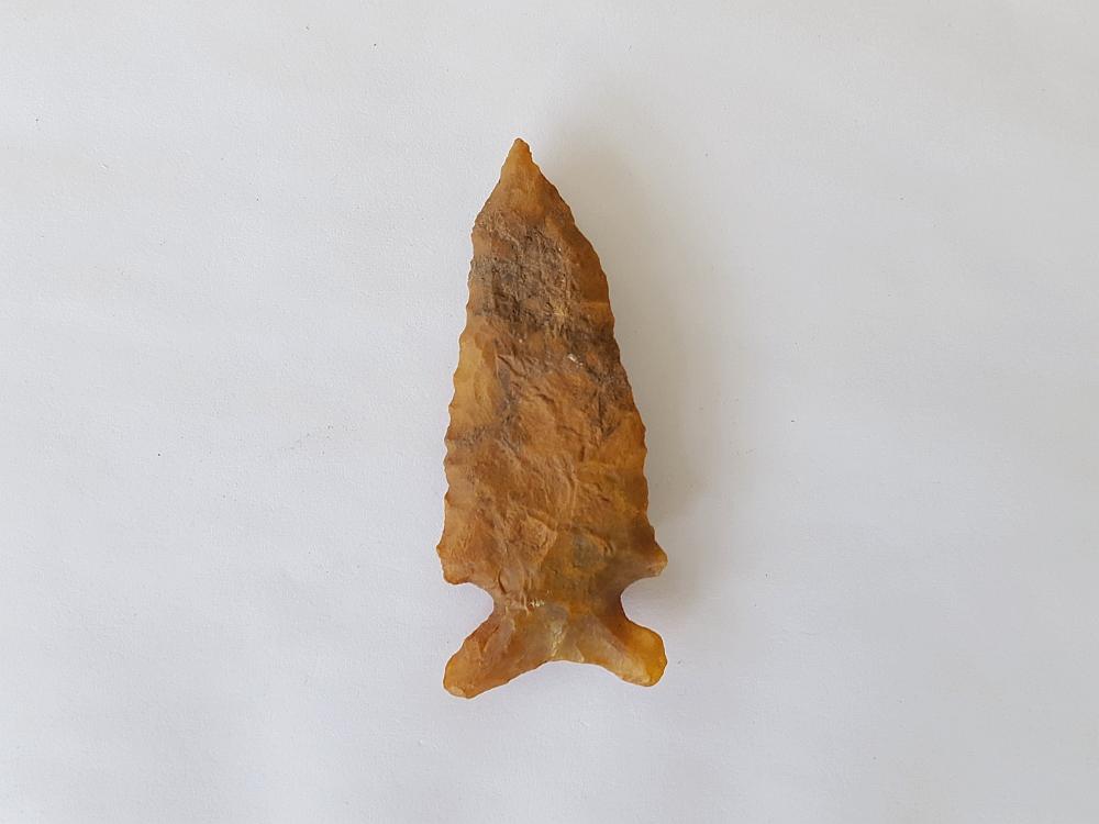 Fl. Big Sandy-Bolen type arrowhead, TRANSLUCENT CORAL w/COA! | Fossils & Artifacts for Sale | Paleo Enterprises | Fossils & Artifacts for Sale