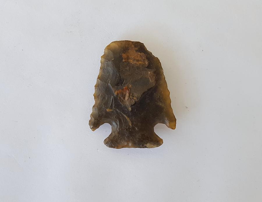 Fl. Bolen type scraper, TRANSLUCENT CORAL! | Fossils & Artifacts for Sale | Paleo Enterprises | Fossils & Artifacts for Sale