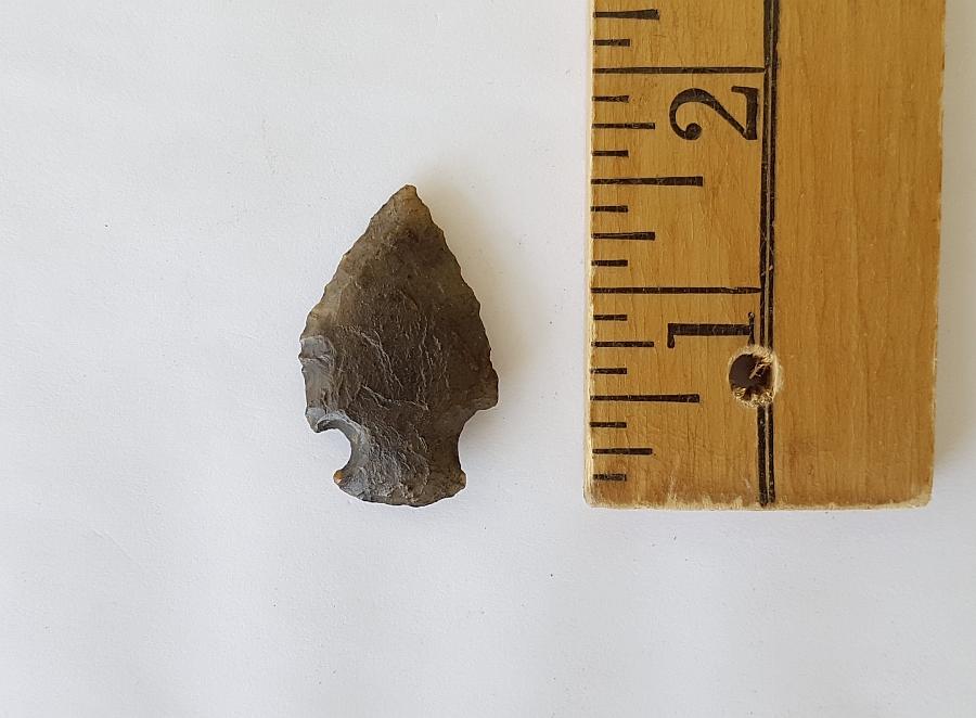 Fl. Bolen Plain type arrowhead | Fossils & Artifacts for Sale | Paleo Enterprises | Fossils & Artifacts for Sale