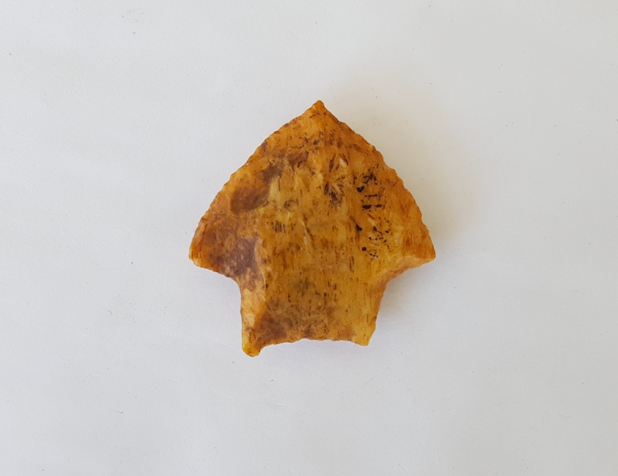 Fl. Gilchrist type arrowhead, ORANGE TRANSLUCENT CORAL W/COA! | Fossils & Artifacts for Sale | Paleo Enterprises | Fossils & Artifacts for Sale
