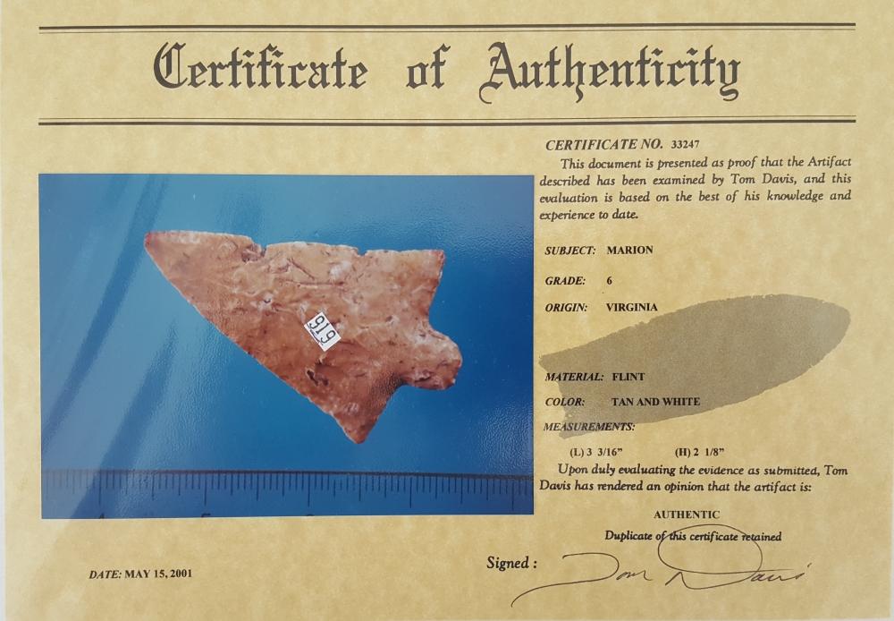 Fl Marion type arrowhead w/COA | Fossils & Artifacts for Sale | Paleo Enterprises | Fossils & Artifacts for Sale