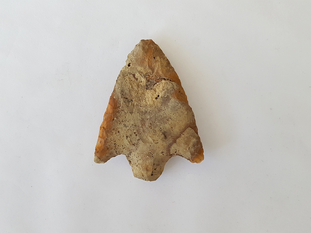 Fl. Newnan type arrowhead, COLORFUL FL. CHERT! | Fossils & Artifacts for Sale | Paleo Enterprises | Fossils & Artifacts for Sale