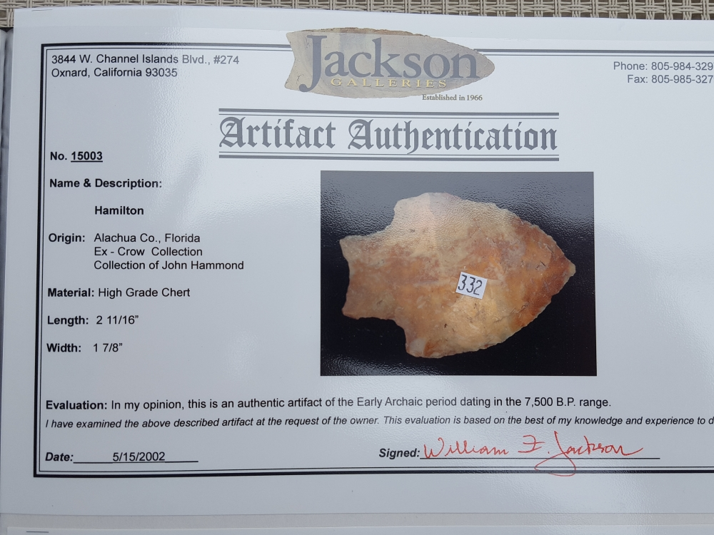 Fl Hamilton type arrowhead with COA! | Fossils & Artifacts for Sale | Paleo Enterprises | Fossils & Artifacts for Sale