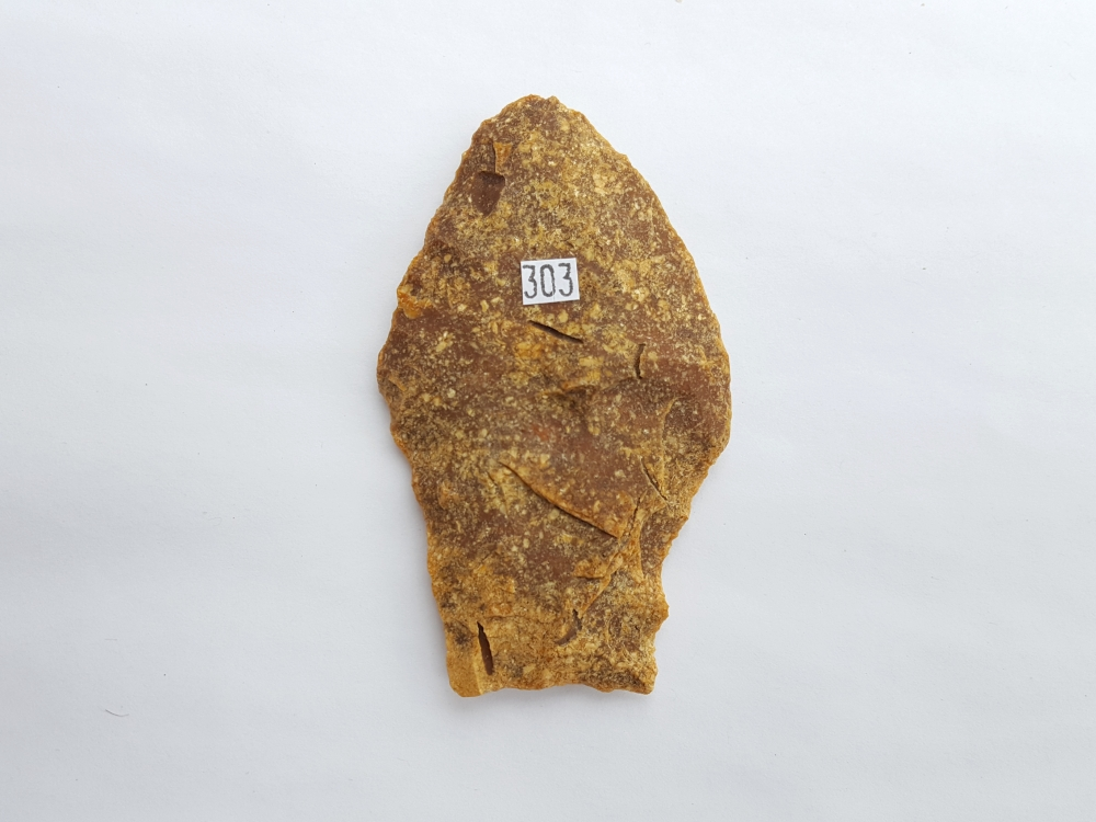 Fl. Simpson Bull Tongue biface with COA! RARE. | Fossils & Artifacts for Sale | Paleo Enterprises | Fossils & Artifacts for Sale