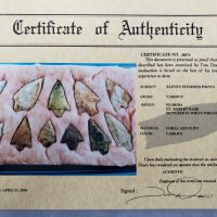 11 Florida points, Chert and coral w/COA! | Fossils & Artifacts for Sale | Paleo Enterprises | Fossils & Artifacts for Sale