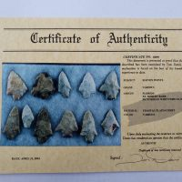 11 Florida points w/COA! | Fossils & Artifacts for Sale | Paleo Enterprises | Fossils & Artifacts for Sale