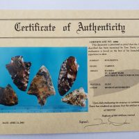 5 Florida points w/COA! | Fossils & Artifacts for Sale | Paleo Enterprises | Fossils & Artifacts for Sale