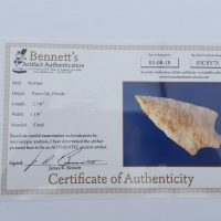 Fl. Newnan type arrowhead, agatized coral with COA! | Fossils & Artifacts for Sale | Paleo Enterprises | Fossils & Artifacts for Sale