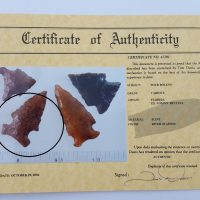 Fl. Bolen Bevel type arrowhead w/Davis COA! | Fossils & Artifacts for Sale | Paleo Enterprises | Fossils & Artifacts for Sale