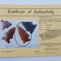 Fl. Bolen Bevel type arrowhead w/Davis COA! | Fossils & Artifacts for Sale | Paleo Enterprises | Fossils & Artifacts for Sale