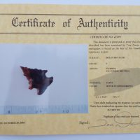 Fl. Bolen Bevel type arrowhead, G9 with COA! | Fossils & Artifacts for Sale | Paleo Enterprises | Fossils & Artifacts for Sale
