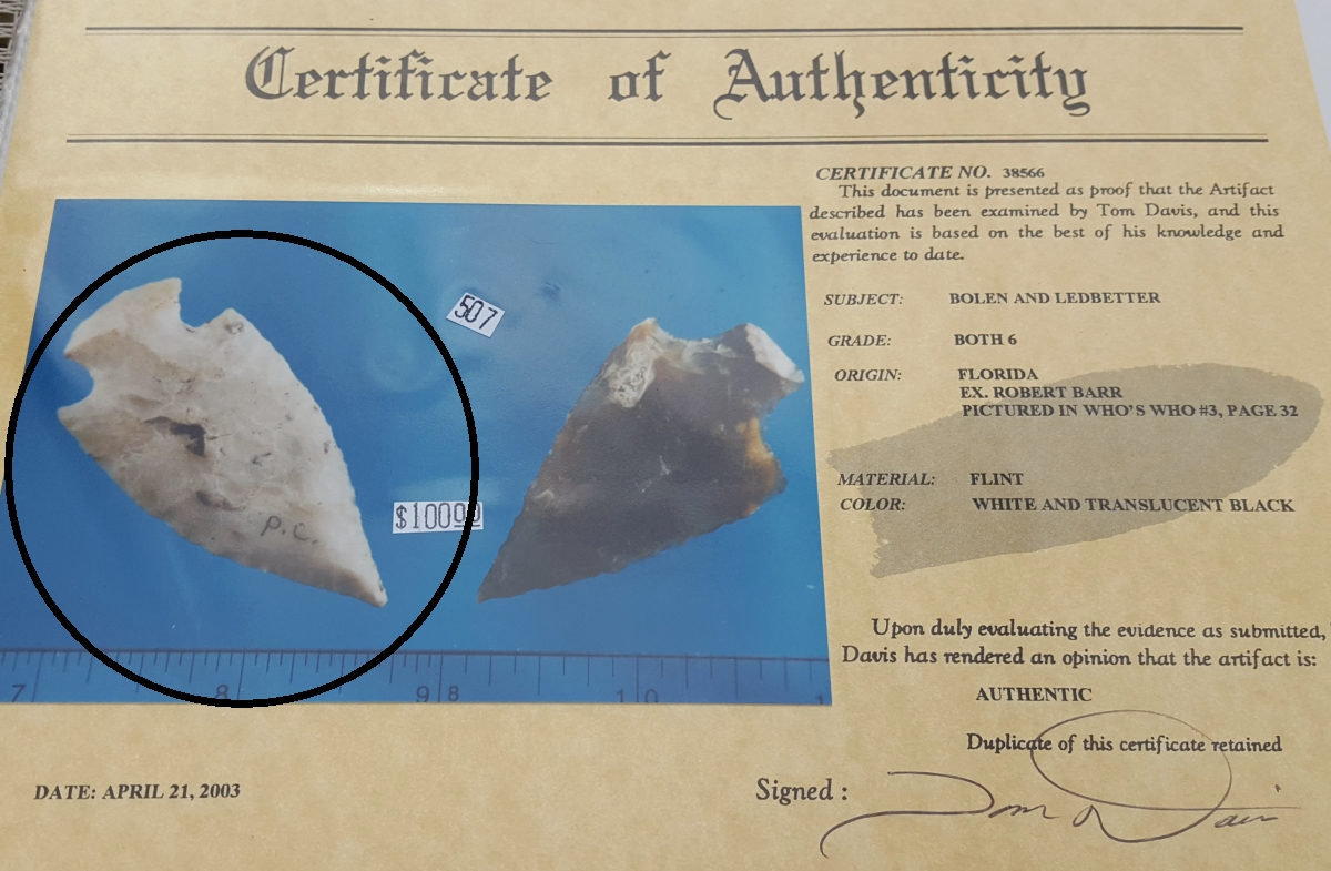 Fl. Bolen Plain type arrowhead with COA. | Fossils & Artifacts for Sale | Paleo Enterprises | Fossils & Artifacts for Sale