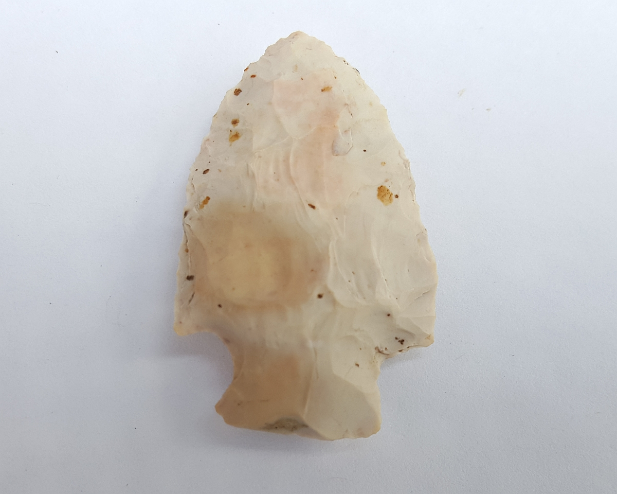 Fl. Bolen Plain type arrowhead. | Fossils & Artifacts for Sale | Paleo Enterprises | Fossils & Artifacts for Sale
