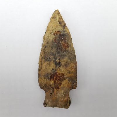 Fl. Broward type arrowhead w/COA.