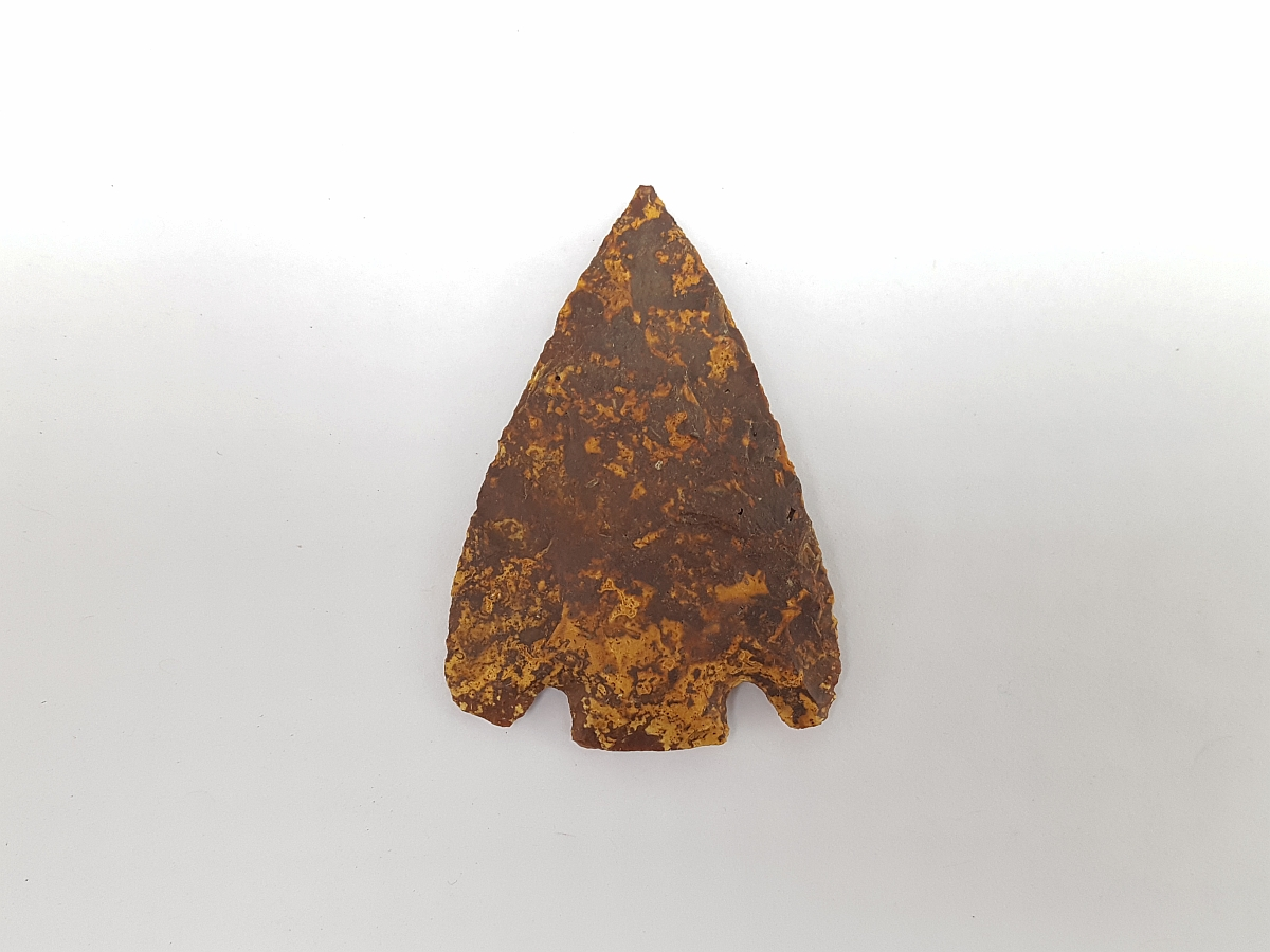 Fl. Citrus type arrowhead w/COA, A PERFECT G10! | Fossils & Artifacts for Sale | Paleo Enterprises | Fossils & Artifacts for Sale