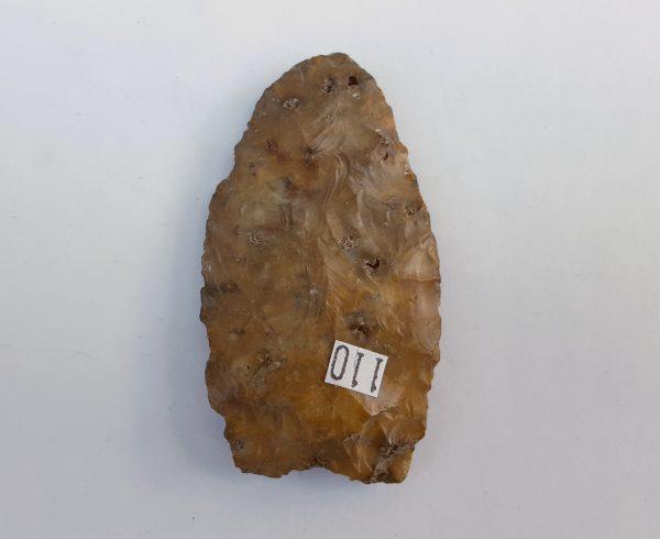 clovis110b