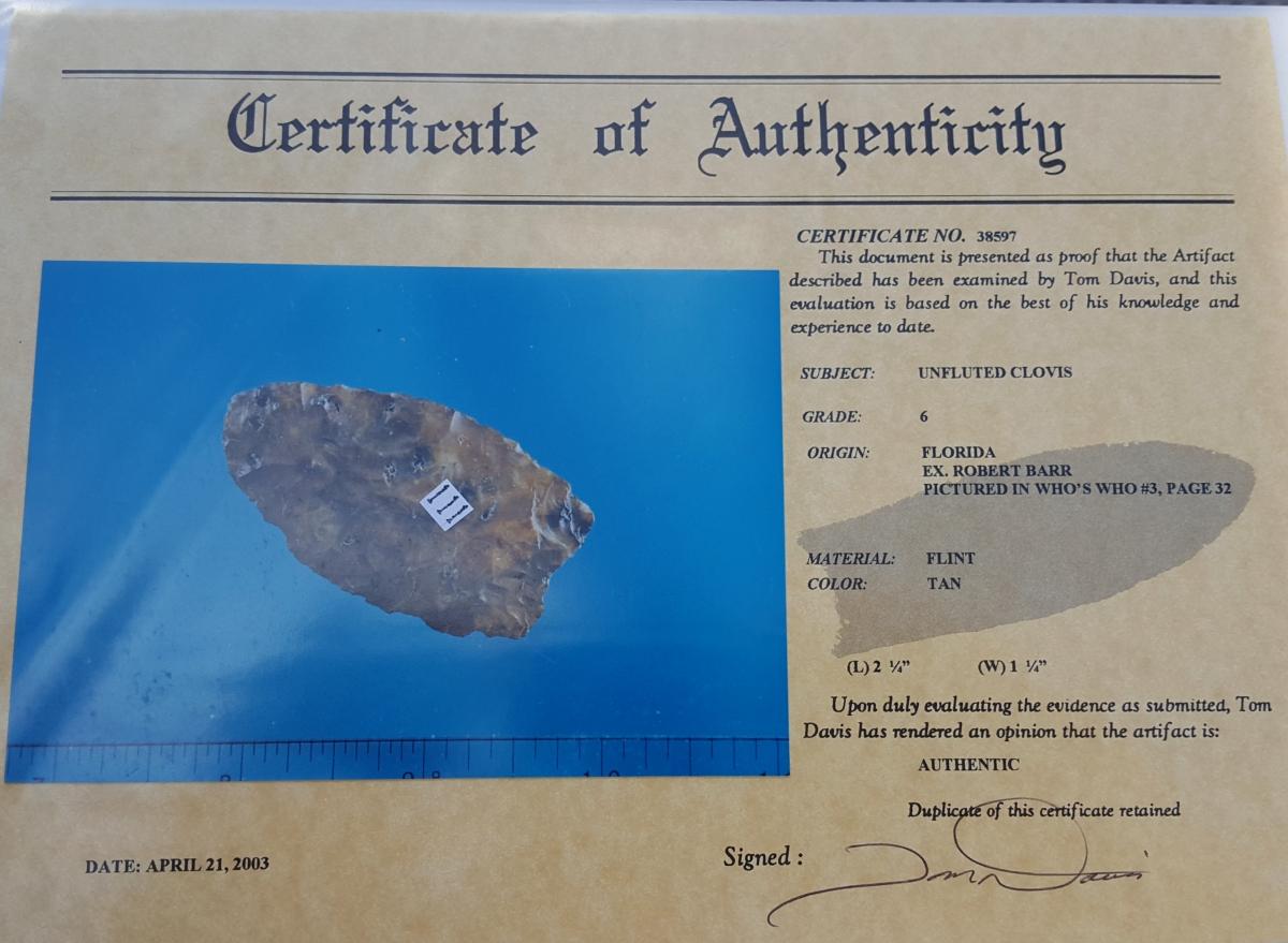 Fl. Clovis type arrowhead w/COA. | Fossils & Artifacts for Sale | Paleo Enterprises | Fossils & Artifacts for Sale