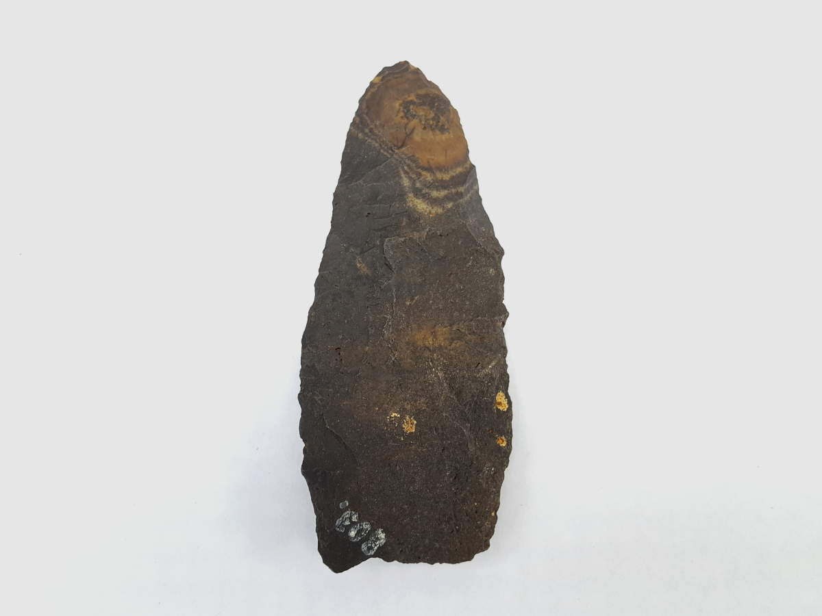 Fl. Cowhouse Slough type arrowhead, PALEO W/COA. | Fossils & Artifacts for Sale | Paleo Enterprises | Fossils & Artifacts for Sale