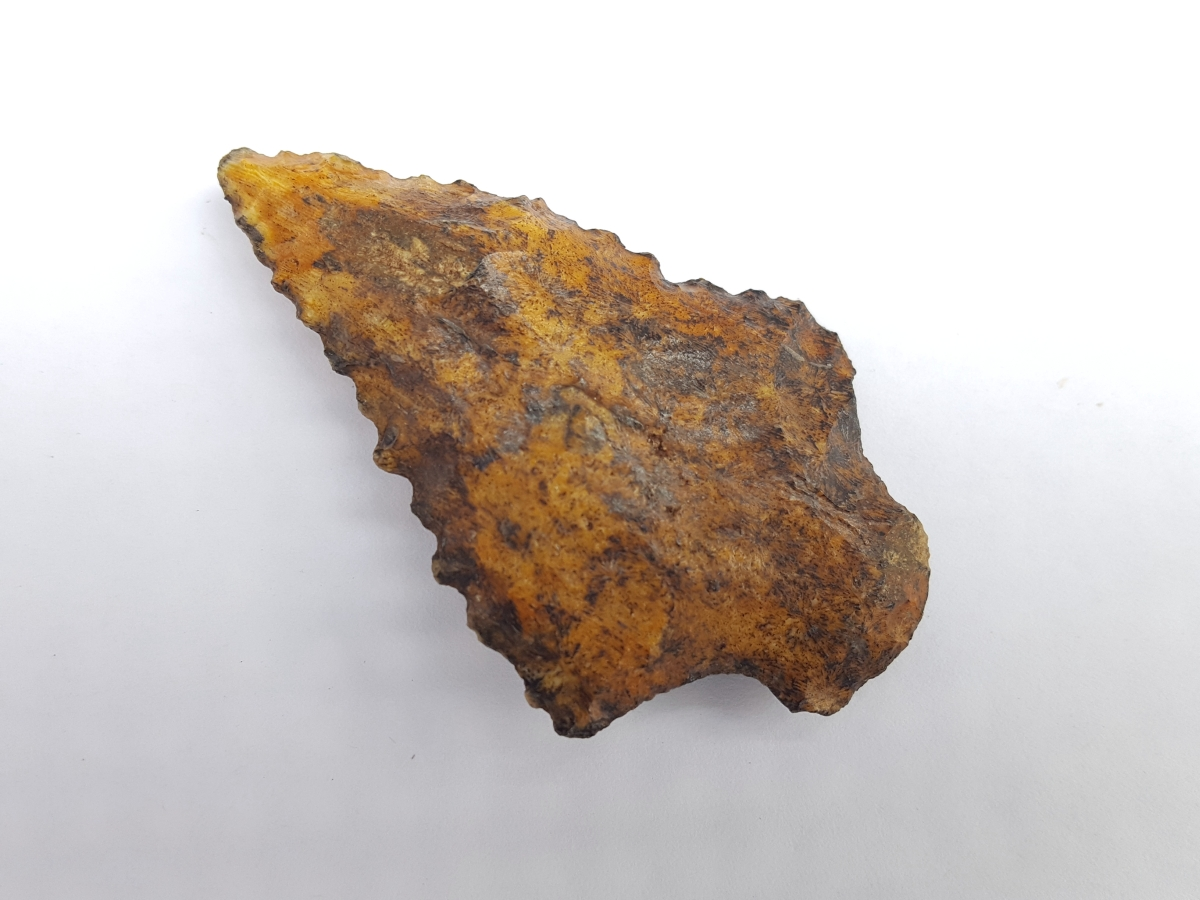 Fl. Elora type arrowhead, YELLOW CORAL! | Fossils & Artifacts for Sale | Paleo Enterprises | Fossils & Artifacts for Sale