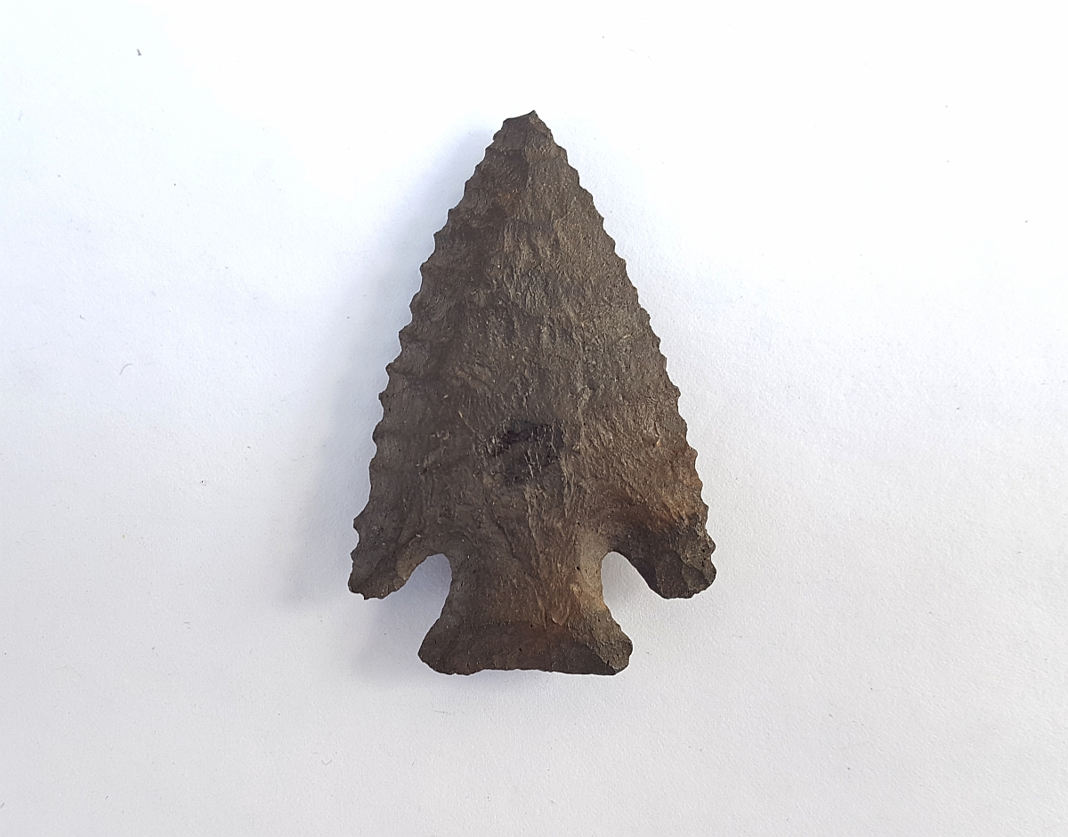 Fl. Lost Lake-Bolen type arrowhead, G9.8 COA! | Fossils & Artifacts for Sale | Paleo Enterprises | Fossils & Artifacts for Sale