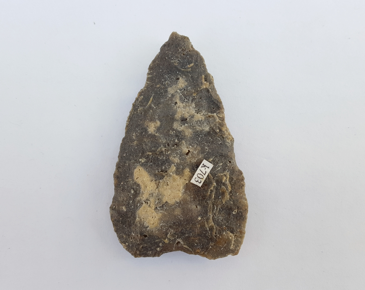 Fl. Marianna type arrowhead, PALEO W/COA! | Fossils & Artifacts for Sale | Paleo Enterprises | Fossils & Artifacts for Sale