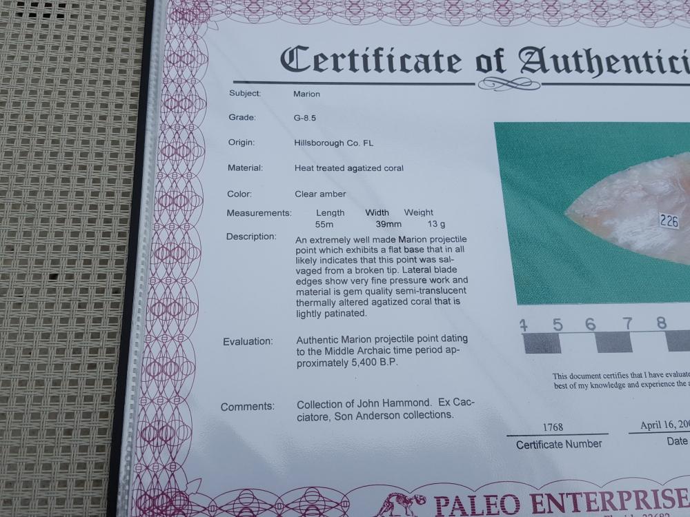Fl. Marion type arrowhead w/COA, TRANSLUCENT CORAL! | Fossils & Artifacts for Sale | Paleo Enterprises | Fossils & Artifacts for Sale