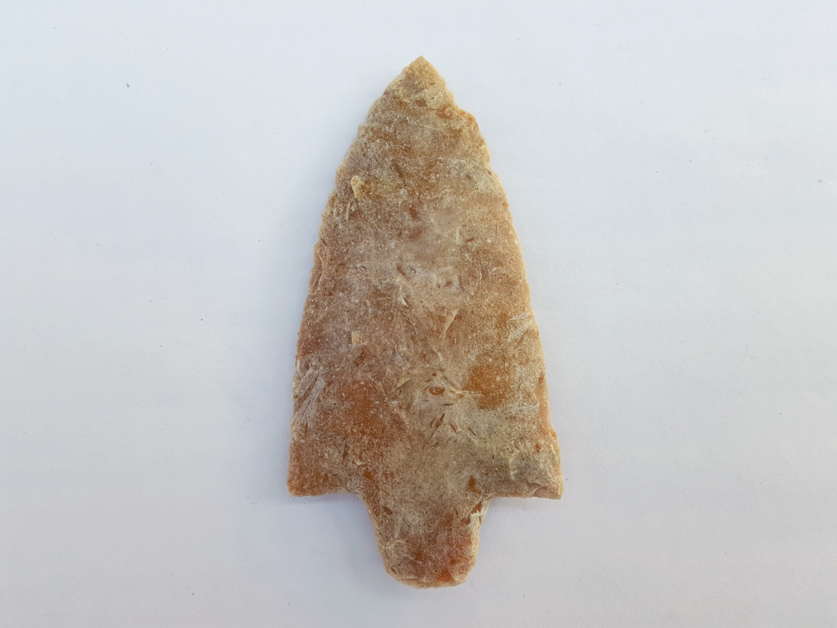 Fl Newnan type arrowhead, agatized coral w/COA | Fossils & Artifacts for Sale | Paleo Enterprises | Fossils & Artifacts for Sale