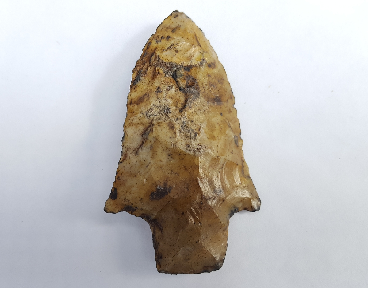 Fl. Pickwick type arrowhead, AGATIZED CORAL! | Fossils & Artifacts for Sale | Paleo Enterprises | Fossils & Artifacts for Sale