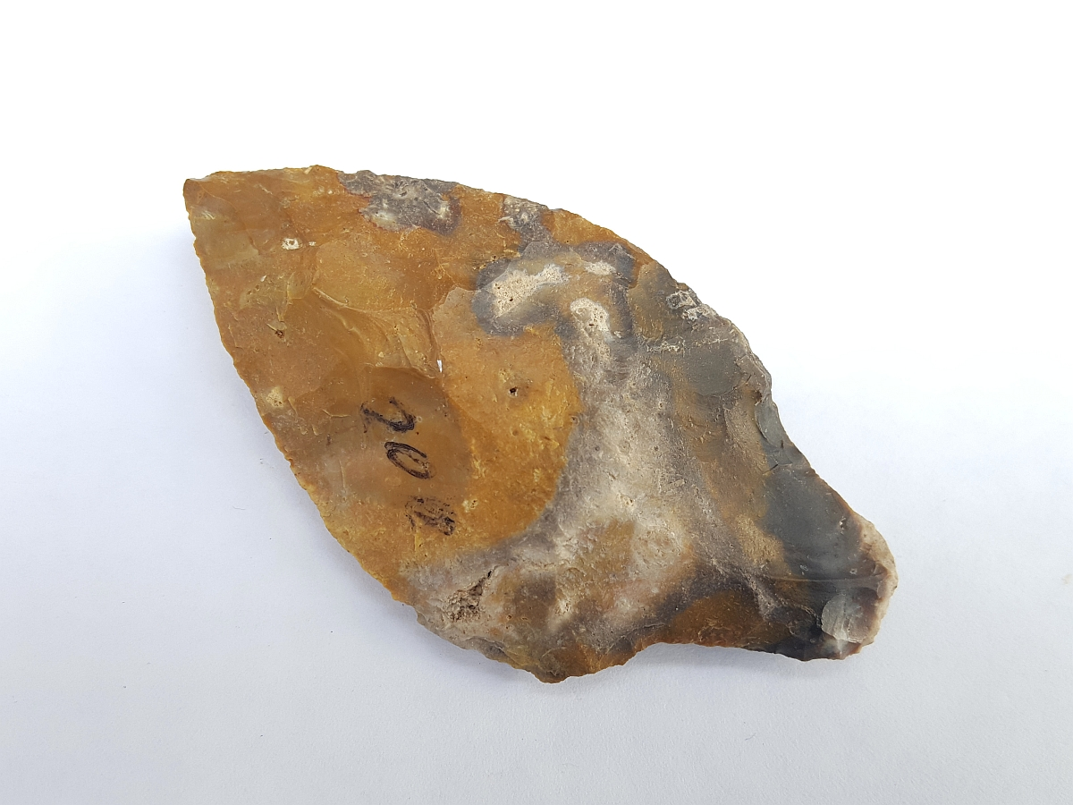 Fl. Putnam type arrowhead, COLORFUL CORAL! | Fossils & Artifacts for Sale | Paleo Enterprises | Fossils & Artifacts for Sale