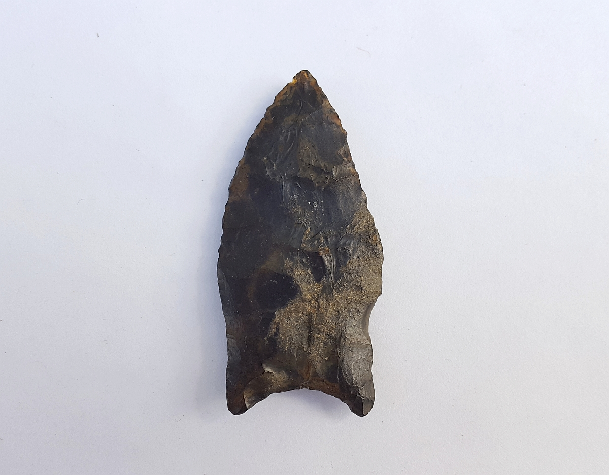 Fl. Simpson type arrowhead, TRANSLUCENT w/COA! | Fossils & Artifacts for Sale | Paleo Enterprises | Fossils & Artifacts for Sale