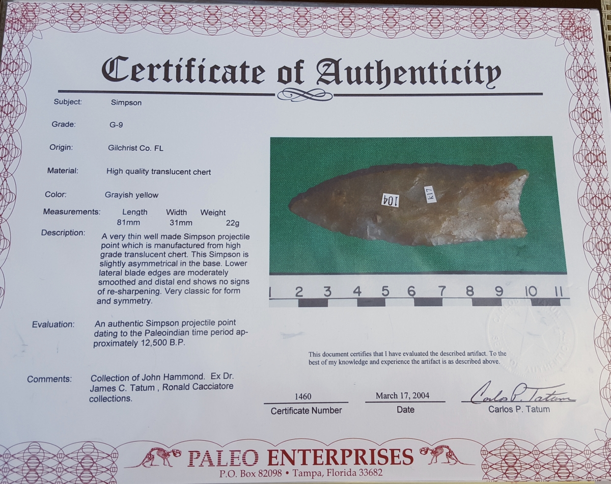 Fl. Simpson type arrowhead, TRANSLUCENT CHERT, comes w/COA! | Fossils & Artifacts for Sale | Paleo Enterprises | Fossils & Artifacts for Sale