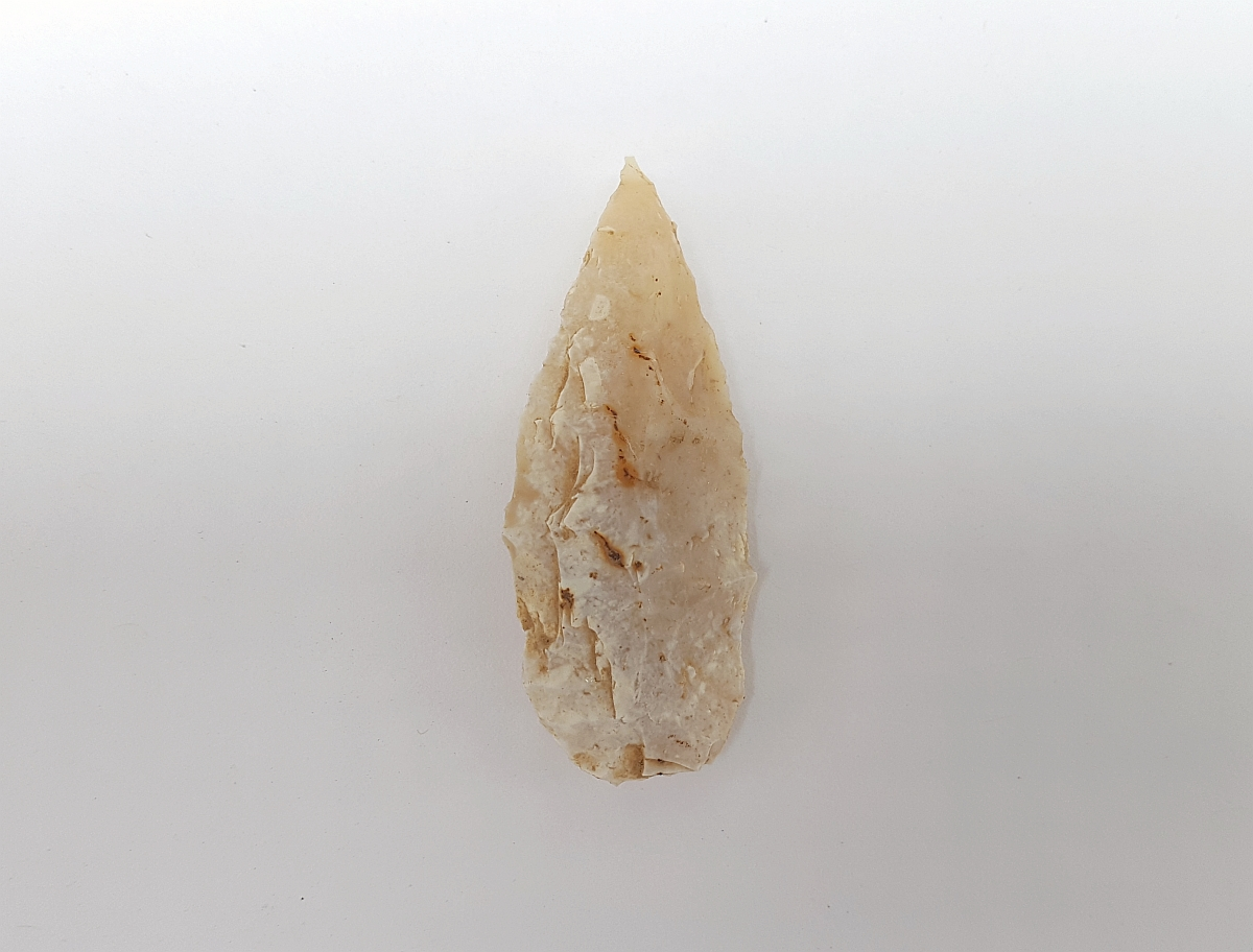 Fl. Tampa type arrowhead w/COA, TRANSLUCENT! | Fossils & Artifacts for Sale | Paleo Enterprises | Fossils & Artifacts for Sale