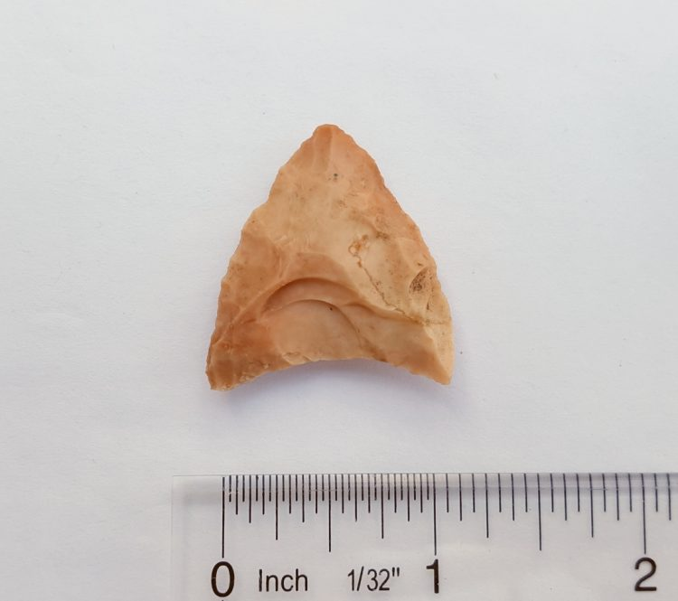 Fl. Safety Harbor type arrowhead, colorful chert. | Fossils & Artifacts for Sale | Paleo Enterprises | Fossils & Artifacts for Sale