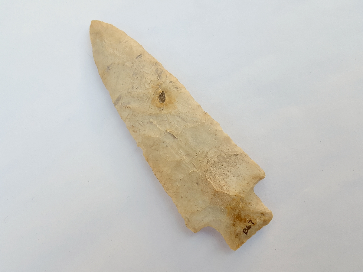 Fl. Kirk Serrated type arrowhead, LARGE AND PERFECT! | Fossils & Artifacts for Sale | Paleo Enterprises | Fossils & Artifacts for Sale
