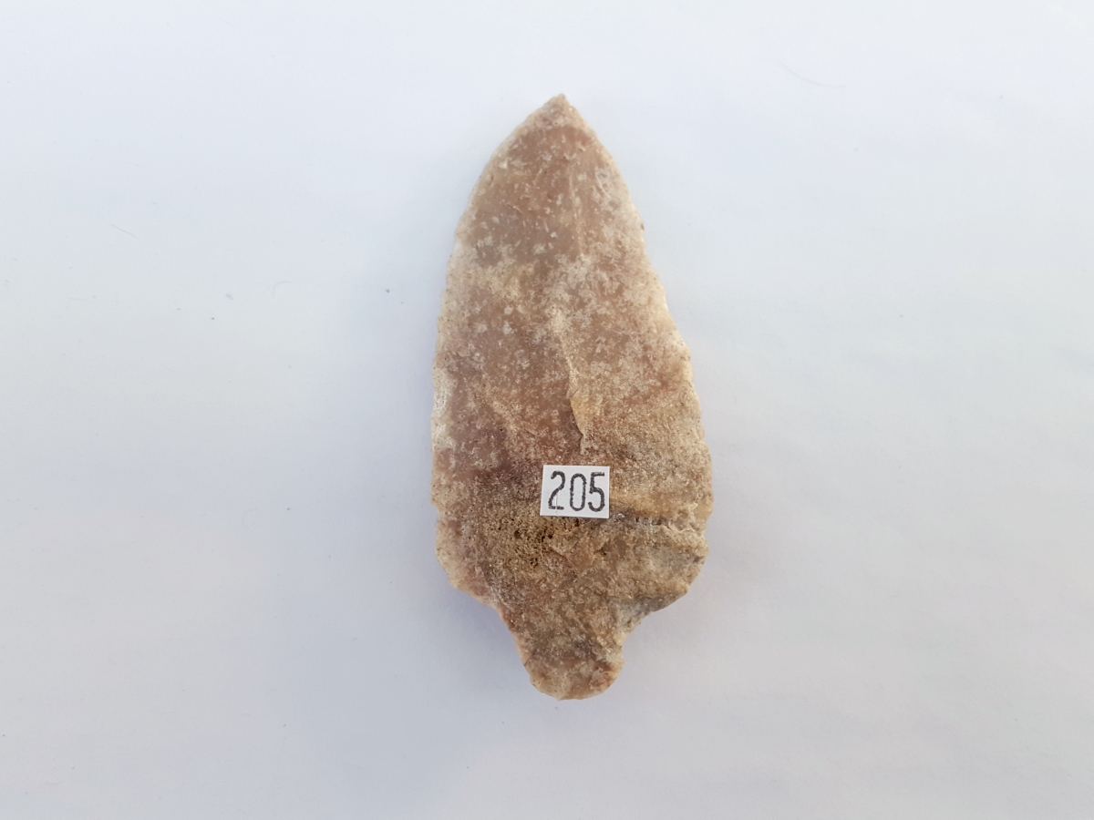 Fl. Sumter type arrowhead | Fossils & Artifacts for Sale | Paleo Enterprises | Fossils & Artifacts for Sale